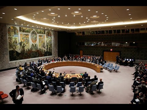 UN Security Council unanimously adopts resolution on Syria c