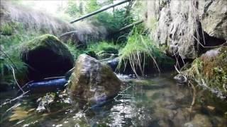 Potok Bystrzyk w Karpaczu