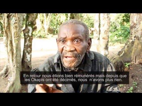 ONU Hebdo #2: La MONUSCO déploie sa force pour protéger la population à Lubero