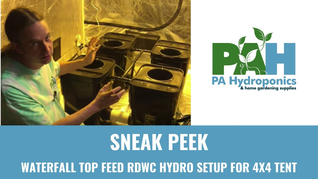 Fallponic Waterfall Top Feed RDWC Hydro Setup for 4x4 Tent