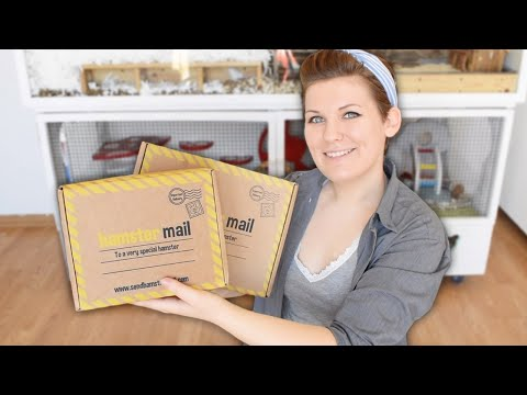 New Toys & Treats For My Rodents | Hamster Mail Unboxing