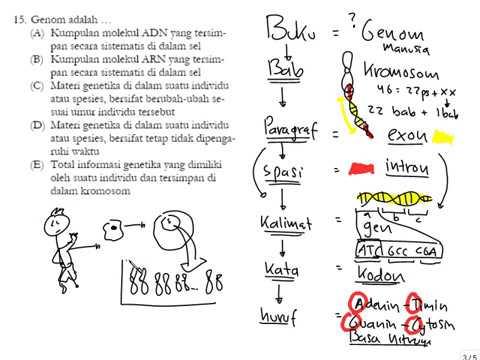 Analogi Genom & Buku