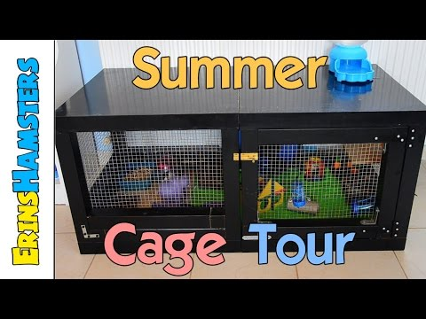 EINSTEIN'S SUMMER CAGE TOUR