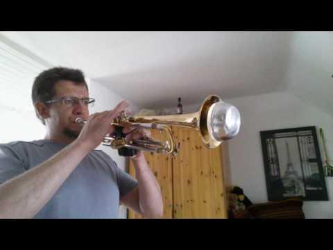TETRIS Trumpet Cover