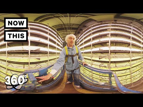 360 TOUR - AeroFarms: The Future of Farming | Unframed by Gear 360 | NowThis