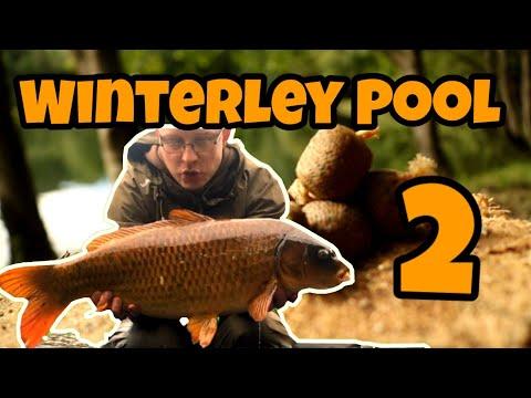 #CARP FISHING# Winterley Pool Diary Episode 2