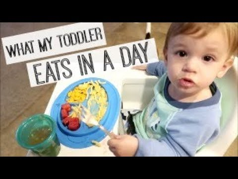 WHAT MY TODDLER EATS IN A DAY 2017 | Day in the Life of a Toddler