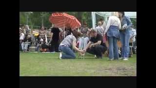 DogStatus.ru: Чихуахуа гладкошерстный, взрослые классы