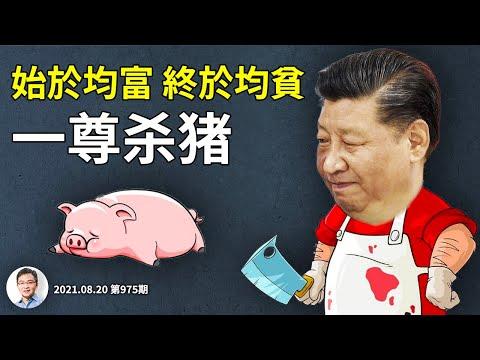 习近平「杀猪计划」提前,一天灭一个行业,企业家误判的原因;始於均富、终於均贫(文昭谈古论今20210820第975期)