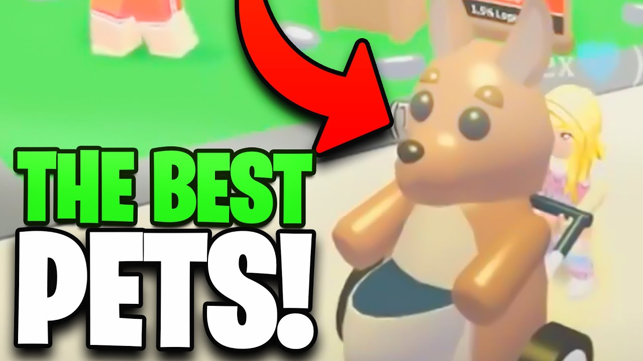 The Best Adopt Me Pets in Roblox! (RANKED)