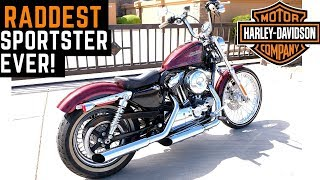 The RADDEST Sportster Ever! Harley 72 Ride Review Impressions Likes Dislikes Davidson 1200 xl1200v
