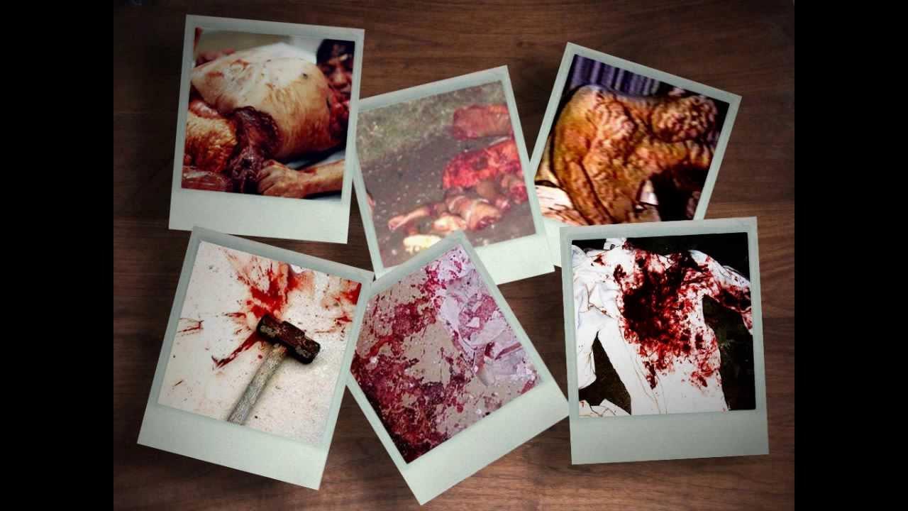 diary of a serial killer pdf