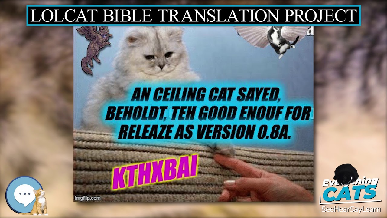 Lolcat Bible Translation Project Everything Cats Youtube