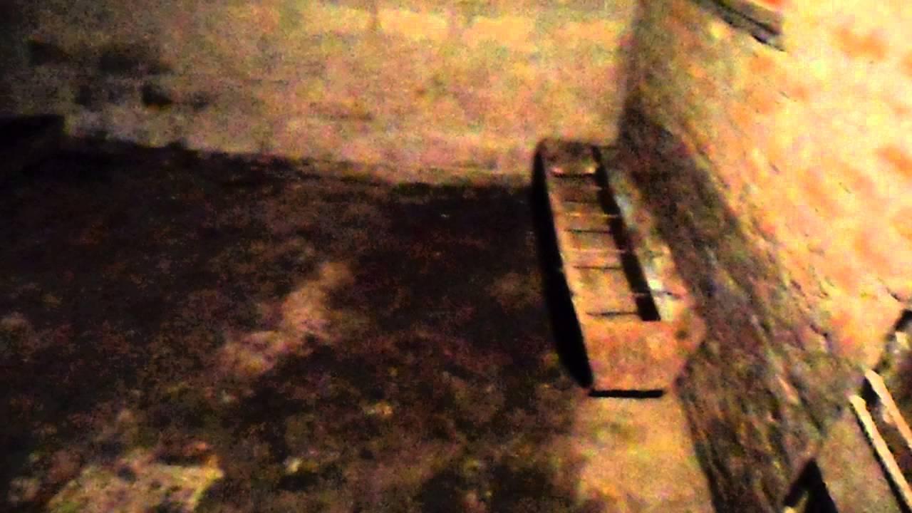 Сарай для свиней своими руками видео фото 708
