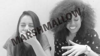 Marshmallow Challenge | Applepie