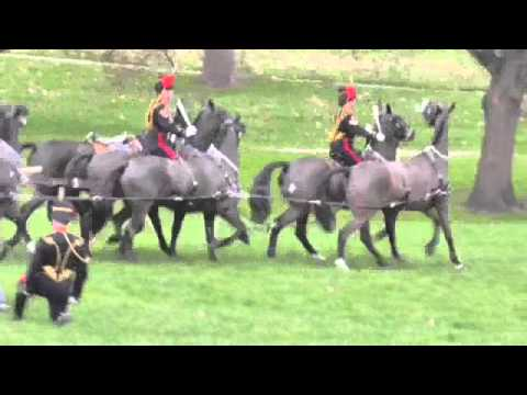 Royal Gun Salute - Accession Day  6 Feb 2016 - Green Park
