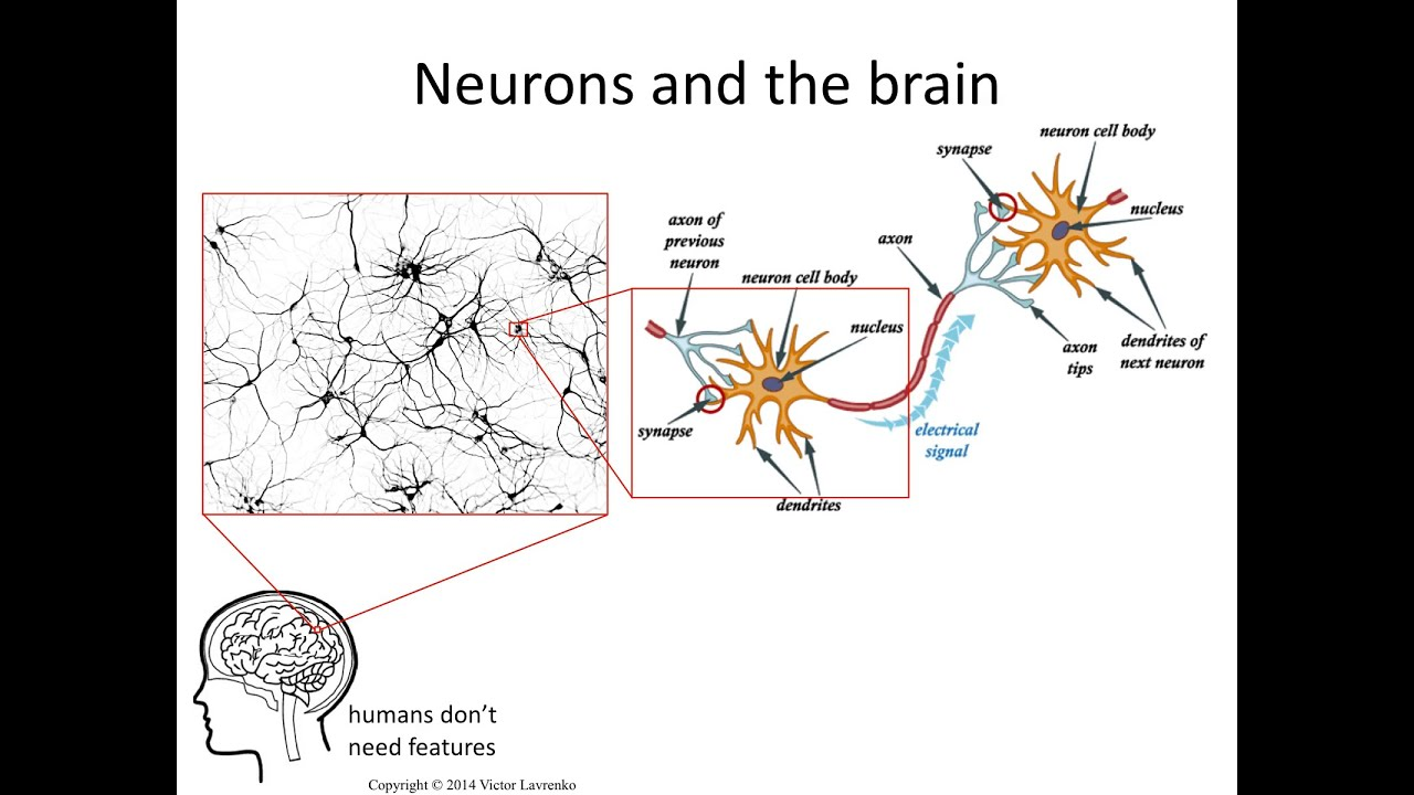 Neural Networks 3 Axons Dendrites Synapses Youtube