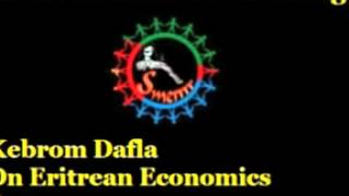 Kebrom Dafla - Eritrean State Of The Economy -  Part 2