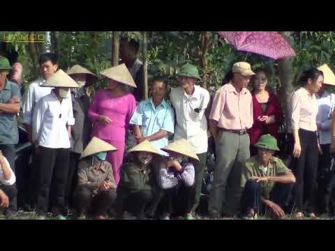 Hà Nội: Trình diễn máy cấy lúa HAMCO tại huyện Sóc Sơn - Cấy lúa
