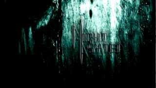 Night Asyted - Arise