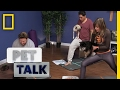 What is Dog Yoga?   Pet Talk