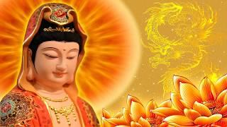 Karaoke Hồ Quảng Phật Giáo Luật Nhân Quả
