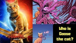 Who is 'Goose the Cat?' What is a Flerken? Captain Marvel Speculation.