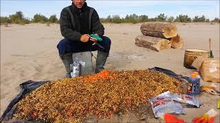 Ловля Сазана, дикого Карпа, на нижней Волге 2017 Закрытие сезона Карпфишинг Рыбалка на реке Волга