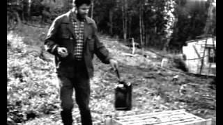 Ищите и найдете (1969) фильм смотреть онлайн