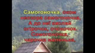 Самогоночка (Караоке) - Гулянка в Україні 2 частина перша