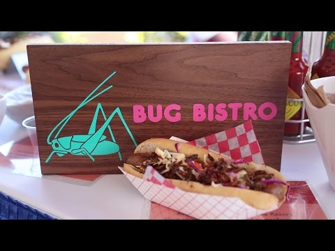 The CNE part two: The CNE EATS! watch us eat bugs lol