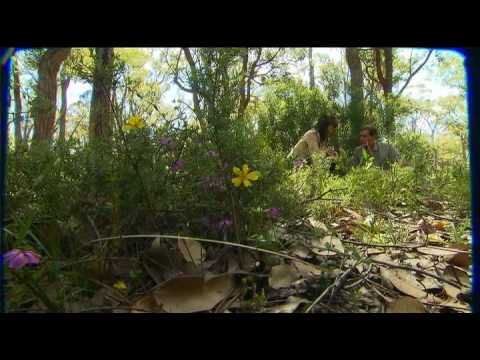 Travel Oz Series 2 Episode 18 Part 4