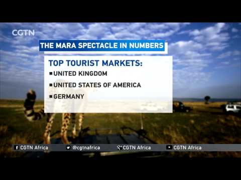 The Great Migration a big earner for Kenya's tourism sector