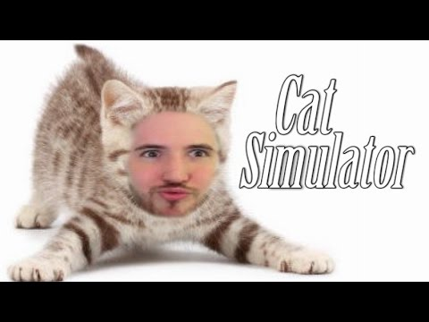 THE MOST COMPLETELY ACCURATE CAT SIM EVER