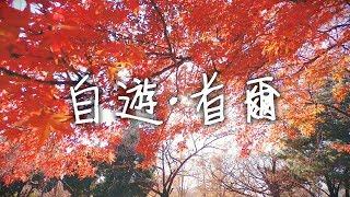 【自遊首爾#3】韓國自由行:景福官、紅葉、廣藏市場、豬腳小姐 | 旅行美食攻略vlog