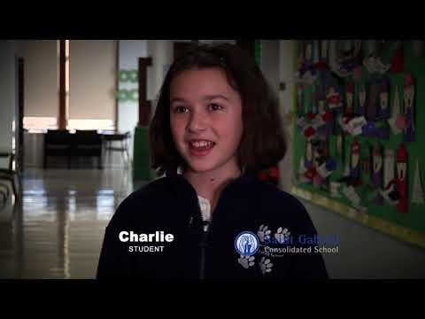 St. Gabriel Consolidated School 2018