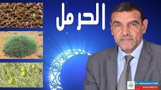 الحرمل | الدكتور محمد فائد