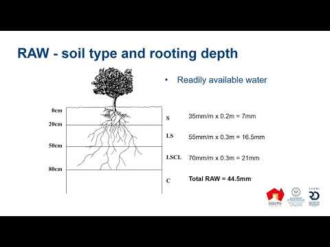 Irrigation budgeting