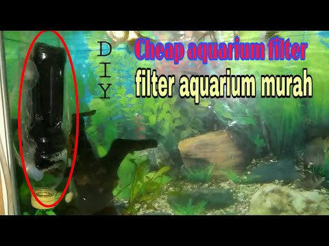 diy-membuat-filter-saluran-udara-akuarium-(filter-murah)