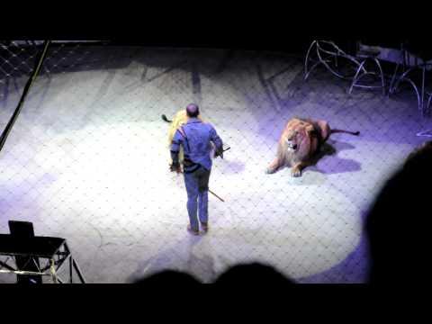 Тигр против льва. Цирк в Новосибирске.