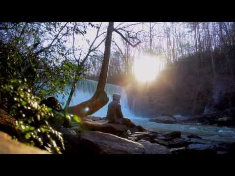 Meditation: My Journey with a Magic Mushroom