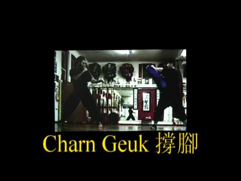 Choy Lee Fut: Basics - Ba Gwa Kicks 蔡李佛蹬撐釘勾四式腳法