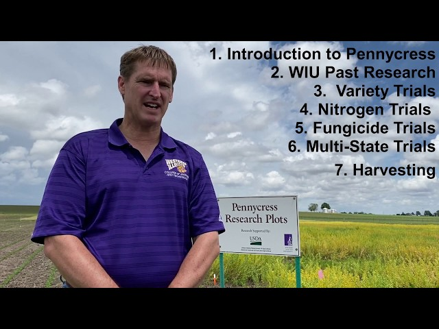 IPREFER Introduction to Pennycress: The New Cash Cover Crop