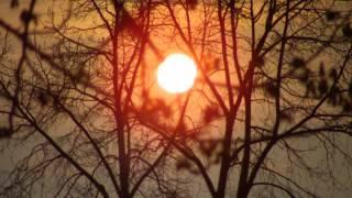 Ade nun zur guten Nacht - bekanntes deutsches Volkslied
