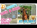 Star Stable [SSO]: Kaddi's Wins & Fails  [07.02.2017] | Let's Play [DEUTSCH]