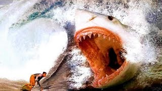 12 Most Dangerous Enemies of the Megalodon