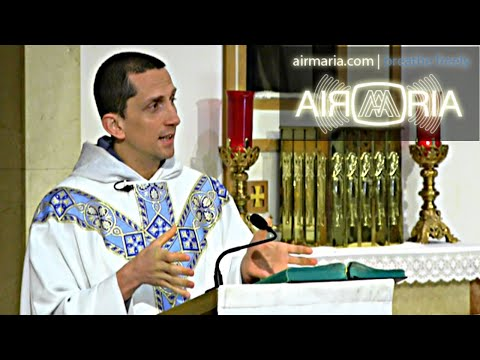 Sin is No Good - Jun 12 - Homily - Fr Matthias