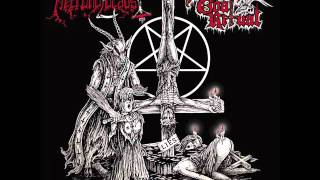Necroholocaust - intro - The bleeding eyes of Jesus