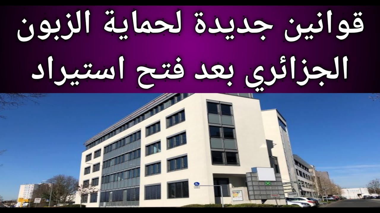 اجراءات جديدة تتعلق باستيراد السيارات والزبون الجزائري