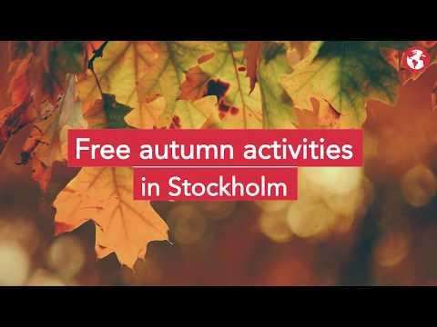 Free Autumn activities in Stockholm